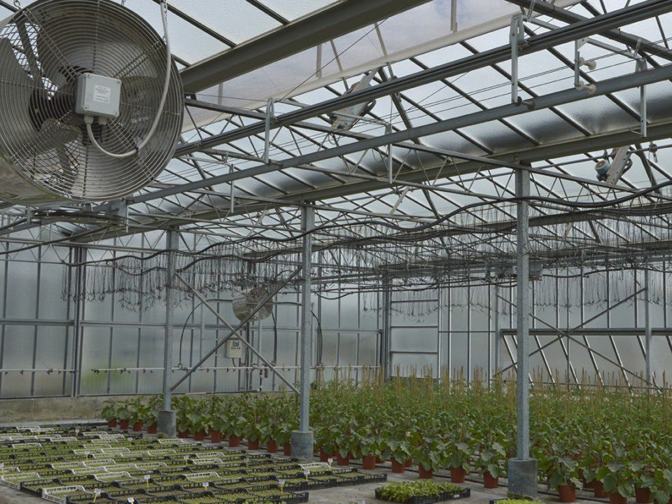 راهنمای خرید هیتر گلخانه